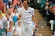 Прогноз на теннис: Стив Джонсон - Даниил Медведев, Истборн, 1-й круг (26/06/2018)