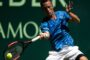 Прогноз на теннис: Миша Зверев – Филипп Кольшрайбер, Мец, 1-й круг (17/09/2018/20:30)