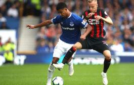 Прогноз на футбол: Хаддерсфилд – Эвертон, Англия, АПЛ, 24 тур (29/01/2019/22:45)