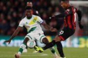 Прогноз на футбол: Норвич – Борнмут, Англия, АПЛ, 23 тур (18/01/2020/18:00)